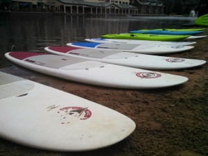 stand up paddle boards all in a row