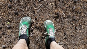 Altra Zero Drop Olympus 1.5. Not enough miles for a real review